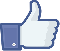 Facebook_like_thumb-small.png