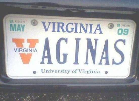 Virginai Vaginas license plate.jpg